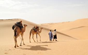 Rozległe piaski Sahary na wschodzie i południu Mauretanii